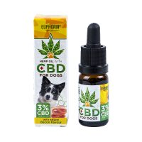 Benefits Of CBD In Treatment Of Cancer In Dogs